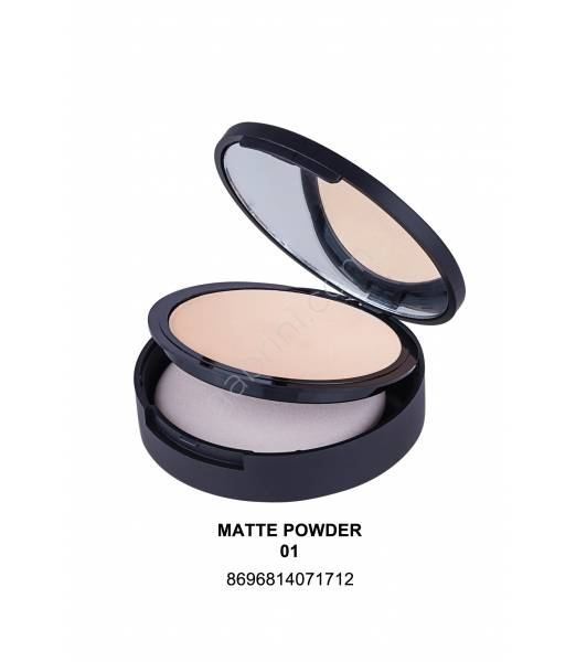 GABRİNİ PROFESSİONAL MATTE POWDER 01